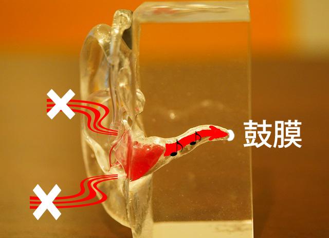 耳の穴とイヤモールドで隙間がしっかり塞がる様子。