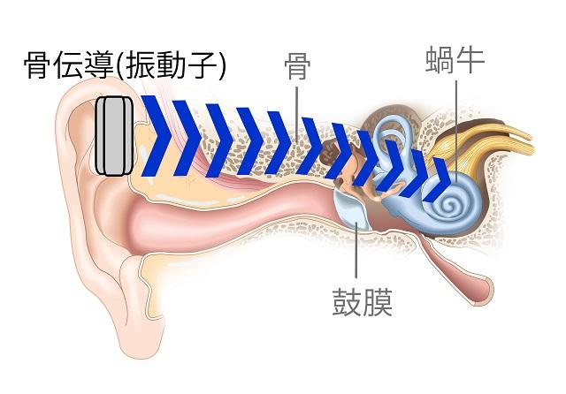 骨伝導で音を聞く仕組み