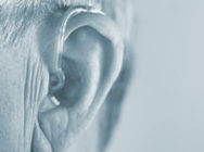 【Q&A】イヤモールドを着けているのに、なぜ補聴器からハウリングが起こるの?